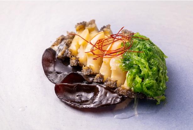「アワビ(Abalone)」