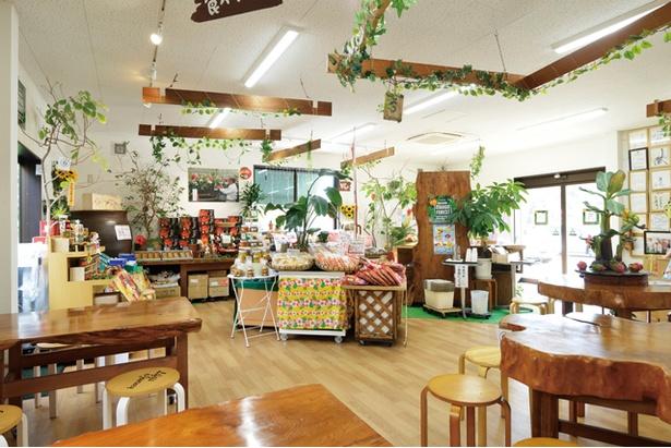 マンゴーや加工品などを中心に販売する店内 / マンゴーの森
