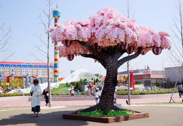 【写真を見る】レゴブロックで作られたサクラの木で、一足先に花見が楽しめる!