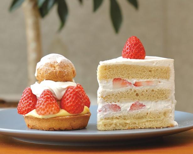 「苺のタルト」(640円、左)と「苺のショートケーキ」(600円、右) / 洋菓子店 slow