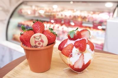 「盆栽Cake イチゴティラミス」(1200円~、左)「ハンティングショートケーキ」(860円~、右) / STRAWBERRY HUNTING