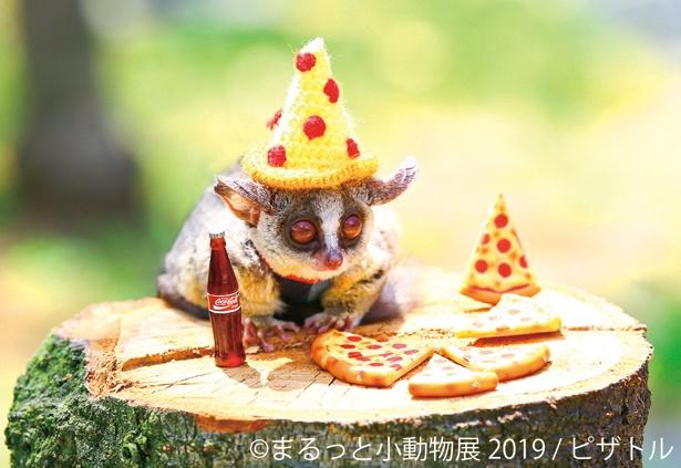 ピザとおそろいの帽子を被って、レッツパーティ!