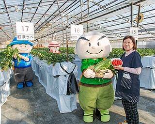 イチゴと野菜、両方楽しめる!秦野のおすすめイチゴ農園&おすすめスポット