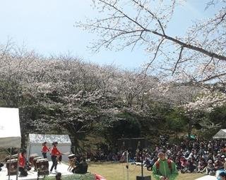 県内有数の桜の名所・鹿児島県いちき串木野市で「第17回さくら祭り」開催
