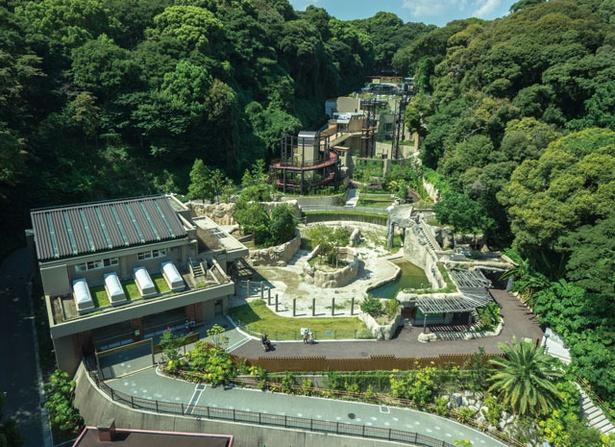 福岡市動物園 / アジア熱帯の渓谷を再現!動物をいろんな角度から観察できる