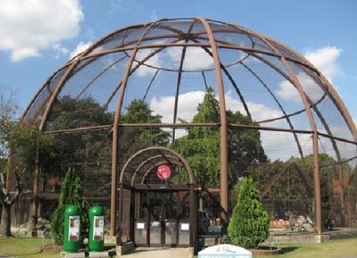 久留米市鳥類センター / 水鳥たちがやすらぐドーム舎