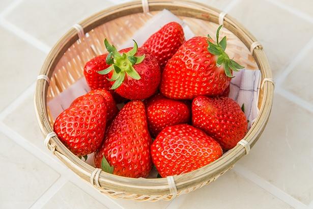 農薬の使用量は通常の5割以下という減農薬栽培。持ち帰りは1パック700円〜(要予約)。今シーズンから恋みのり、星の煌 めきの2種も登場。国産の天然ハチミツなど直売アイテムもあり
