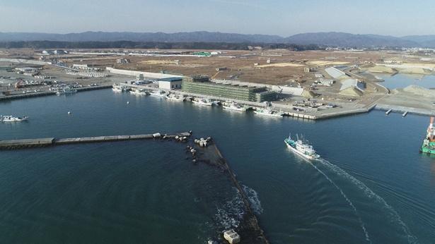 2019年浪江町、漁港では再建が進む