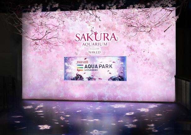 入口では満開の桜が出迎えてくれる