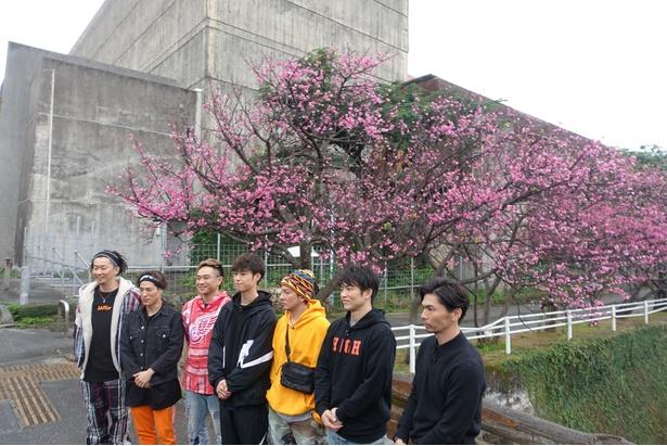 「U.S.A.」に続いて、新曲「桜」の振り付け「桜フィンガー」が早くも話題を集めているDA PUMP