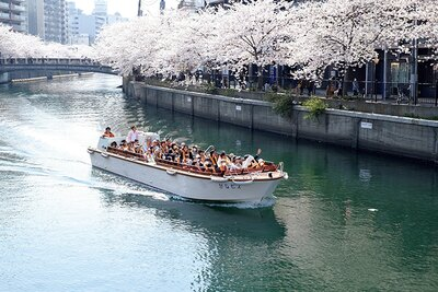 4月14日(日)までは「大岡川 お花見クルーズ」も運航。045‐201-0821(京浜フェリー ボート)2,500円(要予約)