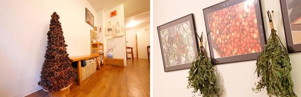 萱村さんの祖父が作った松ぼっくりのツリー。松ぼっくりは、一つひとつが大きく、形もキレイ(写真左)。常連さんからのプレゼントがステキなインテリアに(同右)