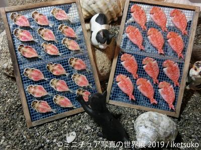 ミニチュアの世界でも、ネコの好物は変わらない / iketsuko