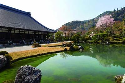 「曹源池庭園」は、約700年前の夢窓国師の作庭当時の情景を残す池泉回遊式庭園。日本で最初に史跡・特別名勝に指定/天龍寺