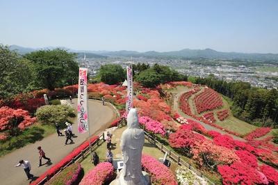 小高い山がまっ赤に染まり訪れる方々の目を楽しませる