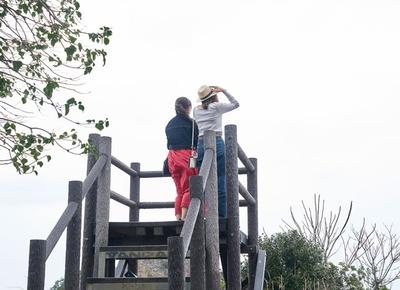 芥屋の大門公園 / 森を進むと、玄界灘を望む展望台が。距離は約200mと気軽なプチ登山が楽しめる