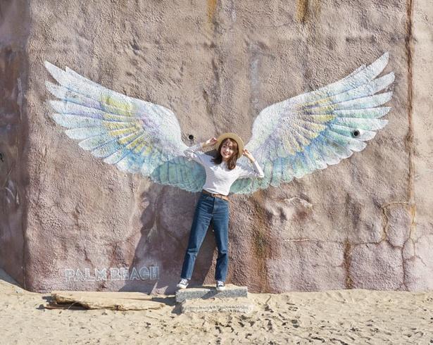 PALM BEACH THE GARDENS / 「天使の羽」で映え写真をパシャリ