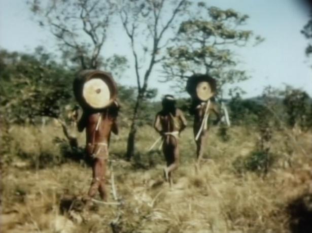 クラホ族の丸太を持っての儀礼的駅伝競争(1949年撮影)