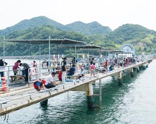 海から山へ爽快に走る!福岡・糸島へ夏遊びドライブ