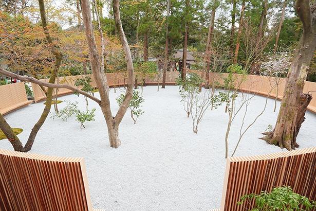憩いの庭に設けられたベンチは上賀茂神社の桧皮屋根(ひわだやね)から発想を得たという。内側は檜の白い部分を生かし、外側には檜の皮を残している