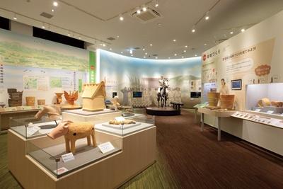 さまざまな展示物のほかに、展示室併設の収蔵庫ものぞくことができる