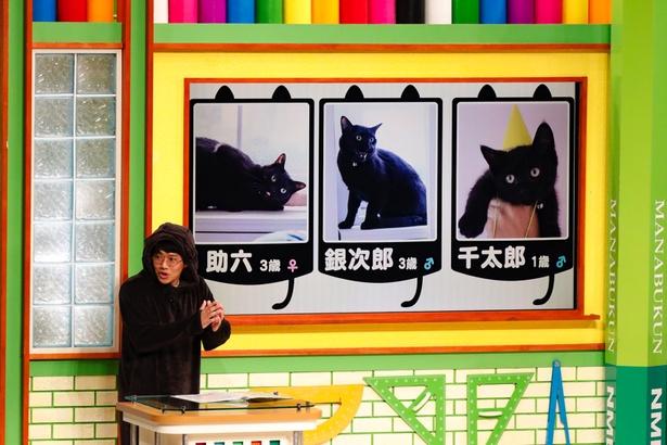 3匹の黒猫を飼っているミキの亜生は、猫耳つきのパーカーを着て登場