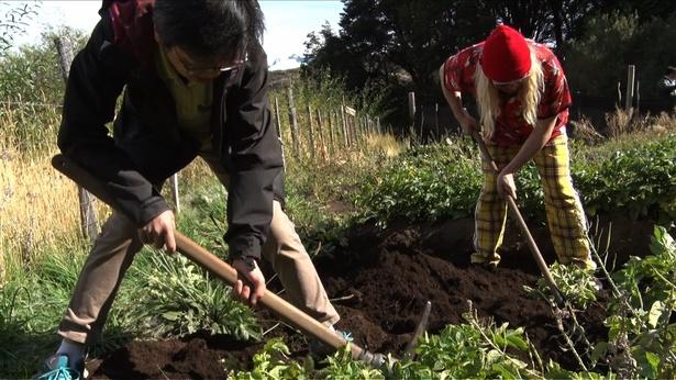 DJ KOOも家畜の世話や野菜の収穫に挑戦するが、次第に身体に異変が