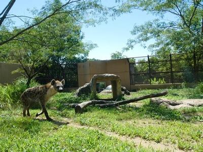 さまざまな動物が見られるのいち動物公園に行こう