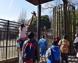 大人も子供も楽しめるイベントを毎日開催!GWは愛媛県立とべ動物園に行こう