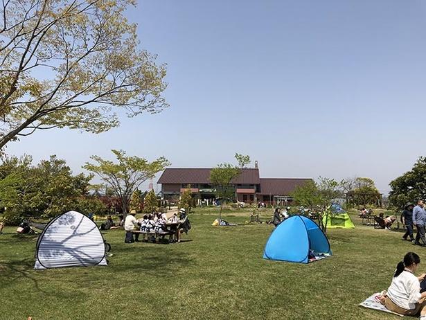 【写真を見る】広い園内で思い思いに春を楽しめる。日よけとしてテントを張るのもOK