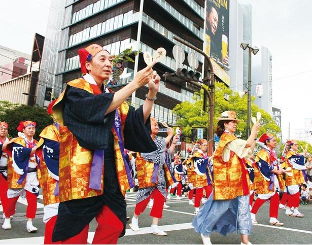 福岡市民の祭り 博多どんたく港まつり / 総踊りは福岡市役所前のお祭り本舞台に加え、市内各所の演舞台にて行われる