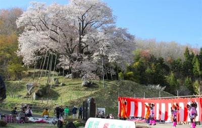 【写真を見る】桜を背景にさまざまな催しも行われる