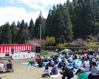 樹齢400年を超える圧巻のヤマザクラ!福島県石川郡古殿町・越代のサクラがまもなく見頃