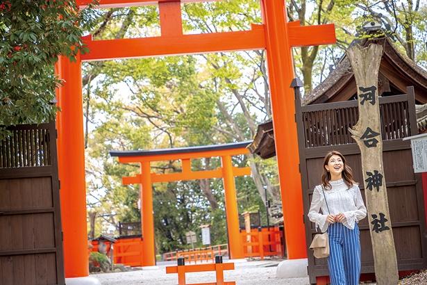 混雑もひと段落した京都へ、ひとりでフラッと出かけてみませんか?
