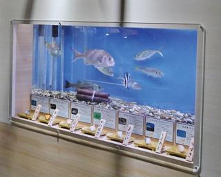 水族館で寿司が食べたくなる!? 名古屋港水族館に、寿司ネタ大集合!
