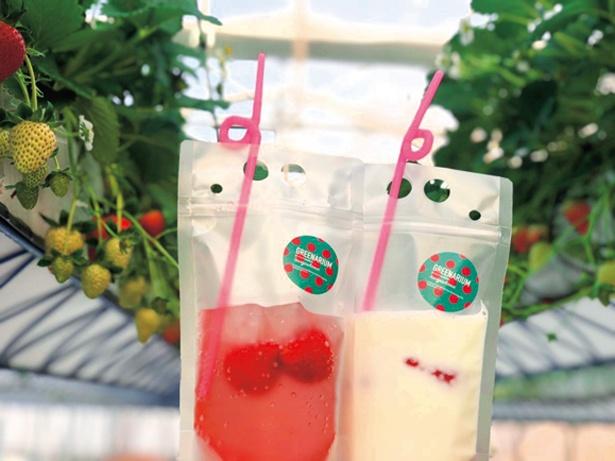 【写真を見る】いちごを自分で潰して飲む「もみもみイチゴミルク」(600円、右)。テイクアウトもOK/グリナリウム淡路島