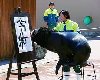 神奈川で「新元号」にちなんだお祝いイベントが続々!