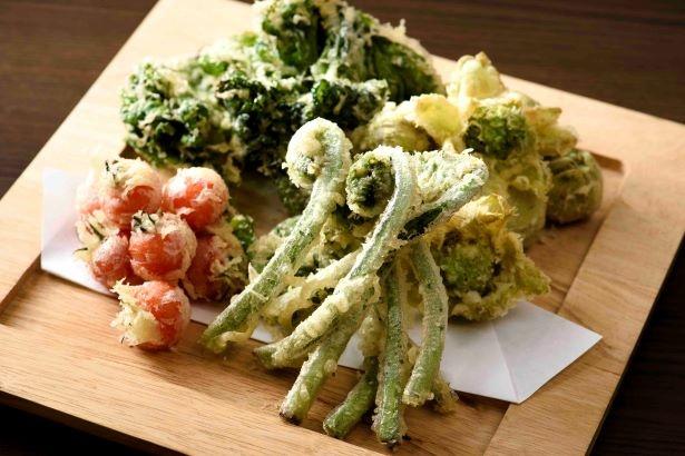 地元で採れたカキ菜やウドなどの天ぷら
