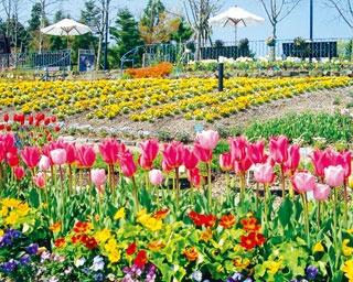 南仏の雰囲気の中でのんびり!印象派の絵画と花がコラボした庭園「ガーデンミュージアム比叡」へ