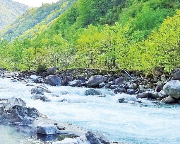 蒲田川が音を立てて流れる、迫力ある様子が見られるのは7月下旬まで!/「深山荘」