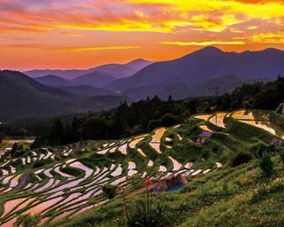 感動の熊野ドライブ!人生で一度は見たい、日本一の棚田へ