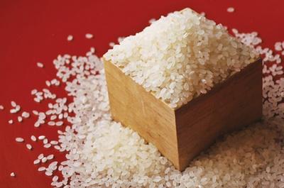 冷害に弱く、栽培も難しい希少なササニシキ。もち米が入らない純粋な米なので、余分な粘りがない。米離れもよく、寿司に合う