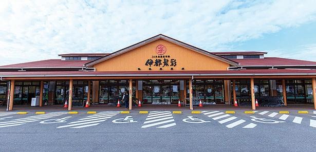 糸島の新鮮な食材を販売する / JA糸島産直市場 伊都菜彩