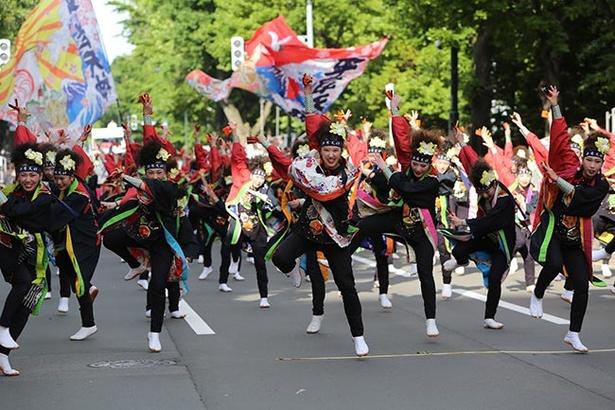 札幌 よさこい 祭り 2020