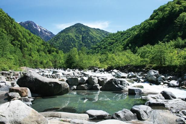 夏は新緑が目の前に広がり、開放感抜群 / 深山荘