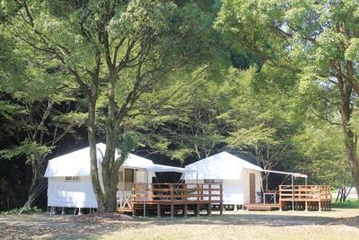 シンプルかつ快適な環境で森林浴 / 癒しの森 ゆ~かむ