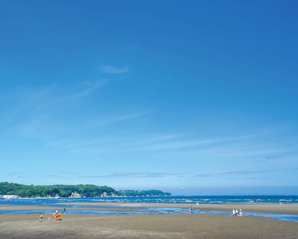 潮干狩りもできちゃう!別府湾の広大な遠浅海岸 / 糸ヶ浜海水浴場