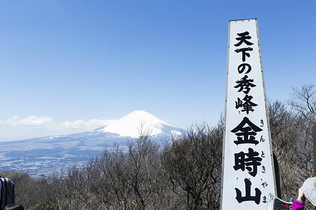 金時山のシンボルと富士山の絶景