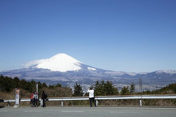 【写真を見る】ハイキングのスタートとなる乙女峠バス停。バスを降りたらこの絶景に出合える