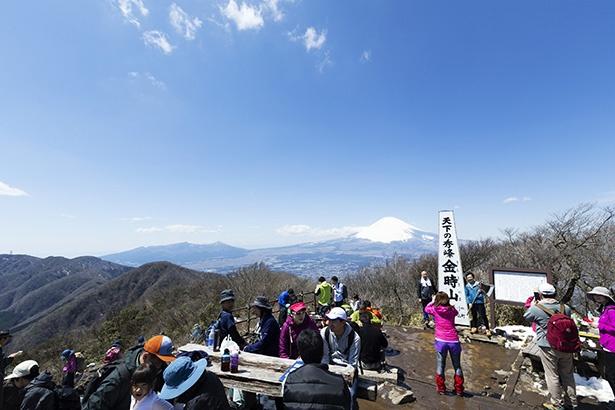 シーズンになると山頂は多くの人でにぎわう。イスとテーブルは金時茶屋のものなので茶屋で飲食を買って座ろう